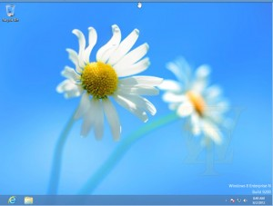 Windows 8 Enterprise N (RTM)